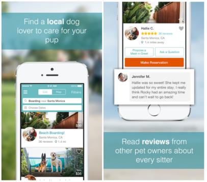 dogvacay app